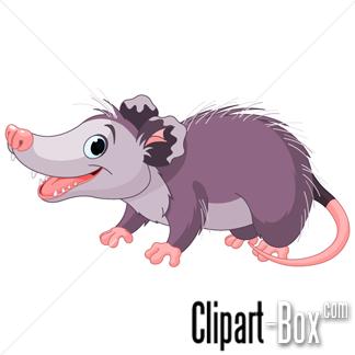 Possum clipart opossum #3