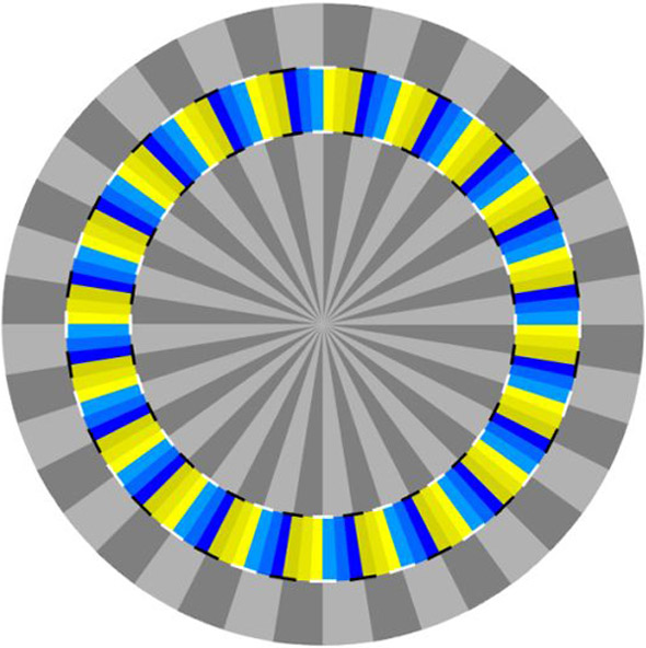 Optical Illusion clipart brain #9