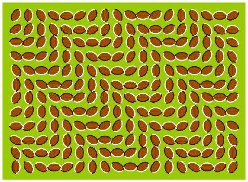 Optical Illusion clipart optica #6