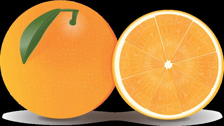 Orange clipart Art Oranges to Orange Half