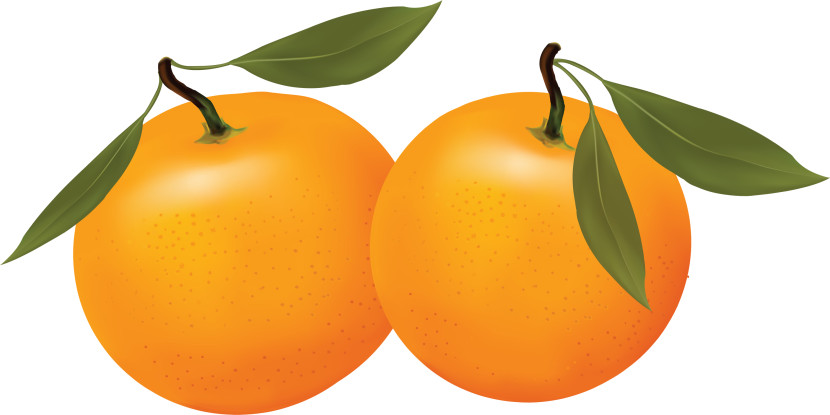Orange clipart Orange clip clipart Orange org