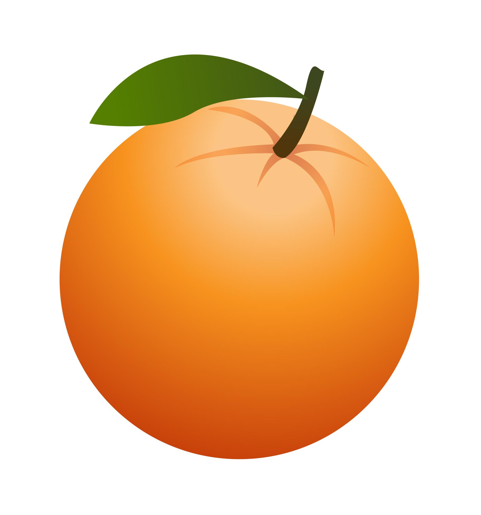 Orange clipart Fruit Clipart Clipart Free Fruit