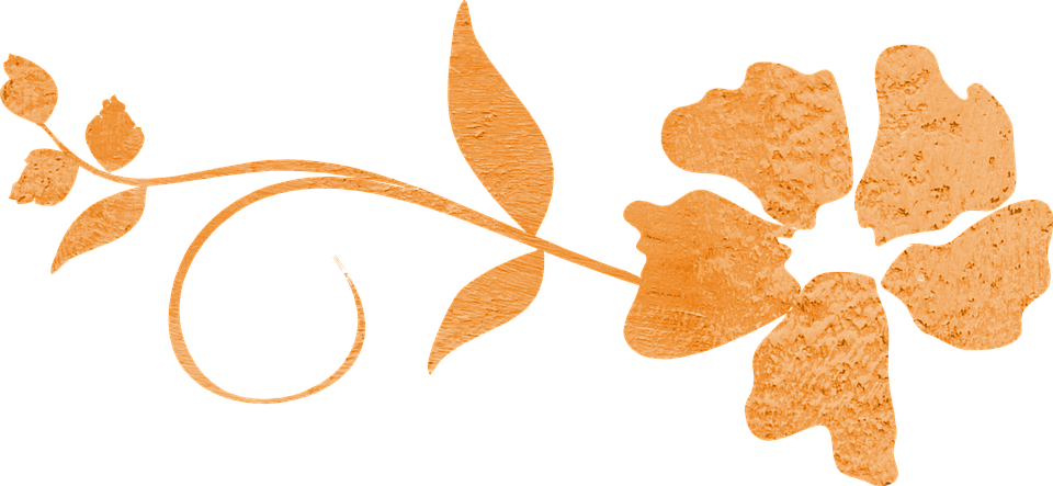 Orange clipart divider Text png Divider Animal Wiki