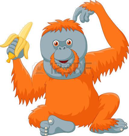 Orangutan clipart orange Clipart Clipart Orangutan Clipart Orangutan