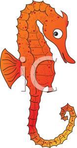 Orange clipart seahorse An Clipart Orange Seahorse Orange