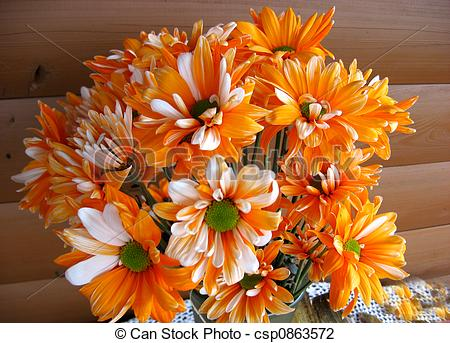 Orange Flower clipart fall flower Fall  Flowers Photo and