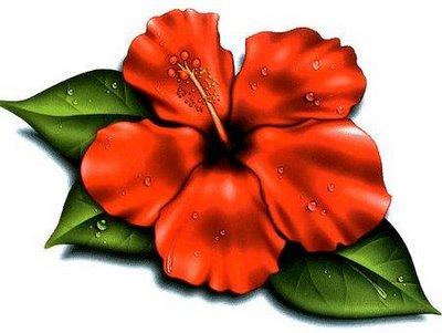 Red Flower clipart hawaiian #10