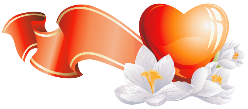Orange Flower clipart flower bottom border Full with Element Flowers