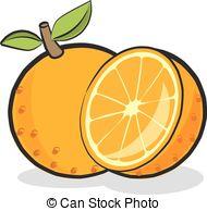 Orange (Fruit) clipart Fruit of  vector Vector