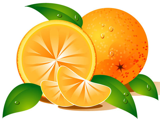 Citrus clipart orange fruit Org DownloadClipart Clipart  Orange