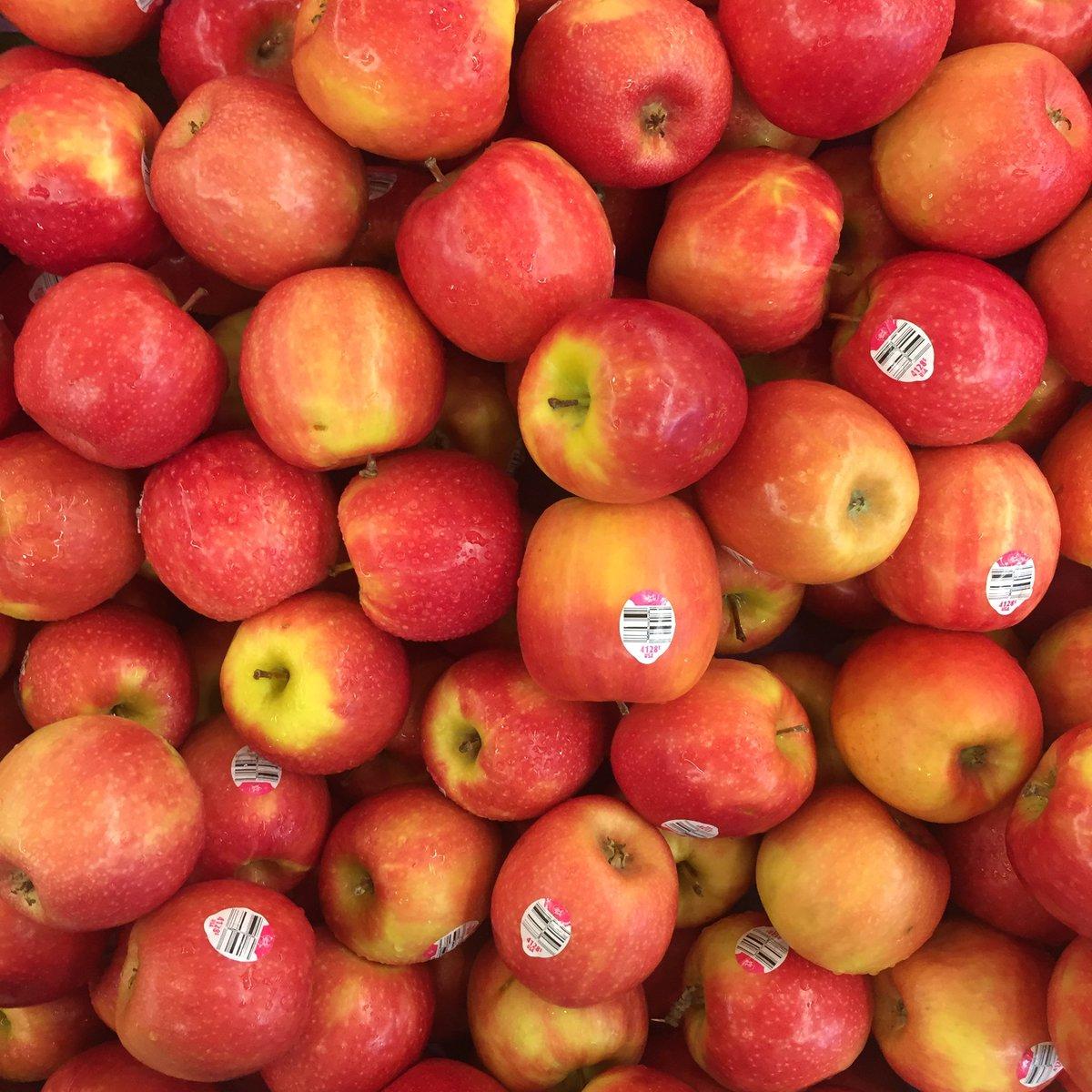 Orange (Fruit) clipart epal 1 pala Twitter: Aiy jenis