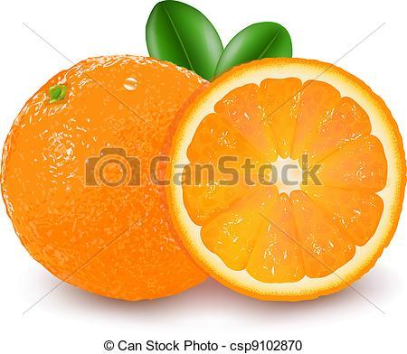Orange (Fruit) clipart vector Fruit Art Vector orange of
