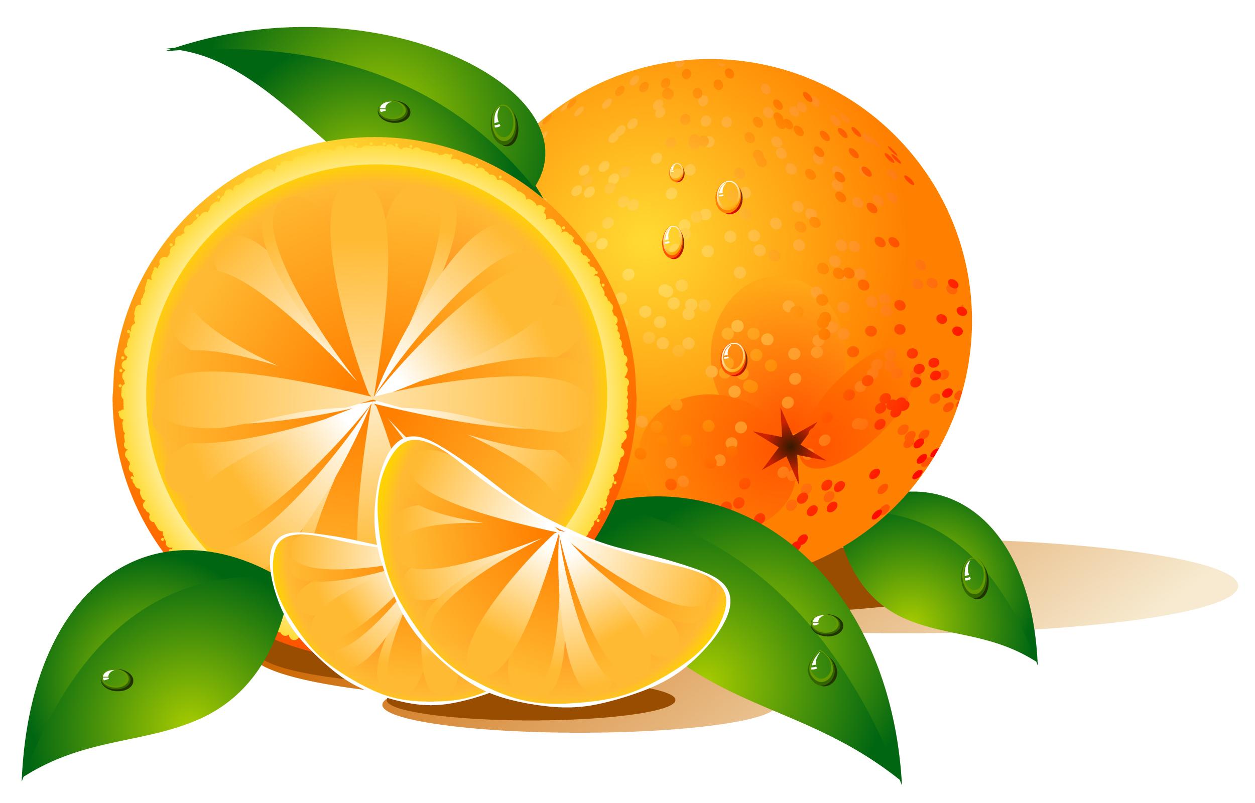 Orange (Fruit) clipart vector On Vector Free Clip Clip