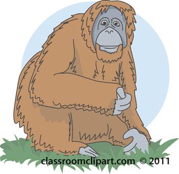 Orangutan clipart Clipart clip #52 art #52