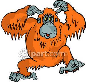 Orangutan clipart orange Clip Clipart Panda Art Free