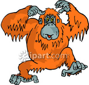 Orange clipart sports car Clipart Clipart Images Orangutan Clip