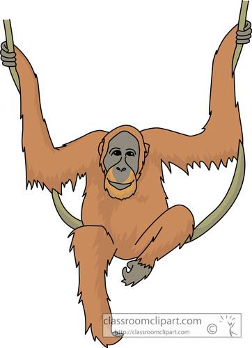Orangutan clipart Orangutan Free Clipart Top Clipart