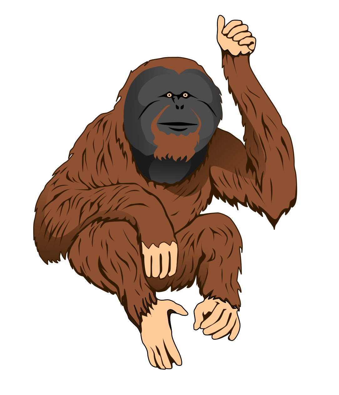 Orangutan clipart Clip Orangutan Free Art