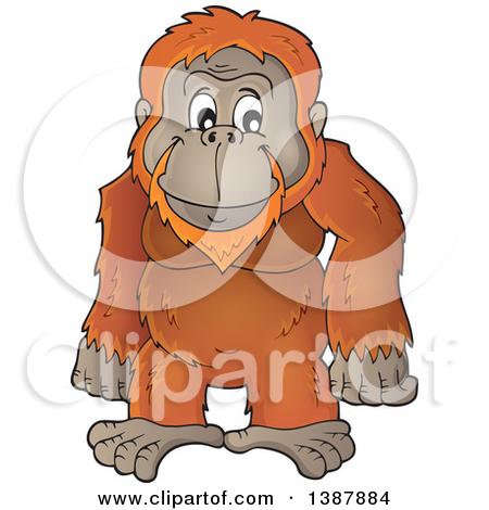 Orangutan clipart orange Free Clipart Clipart 55 Orangutan