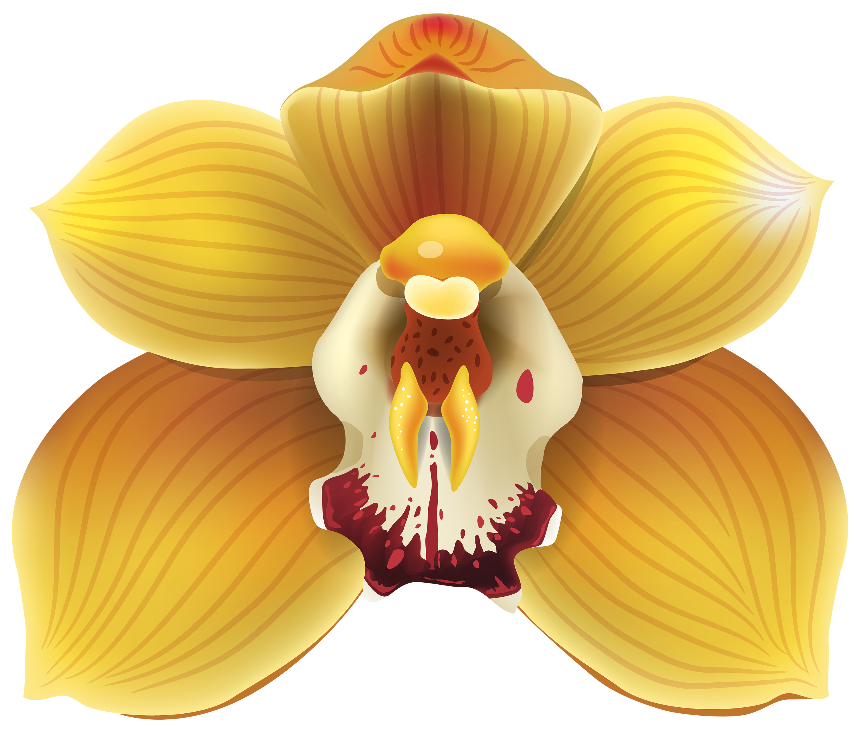 Orchid clipart graphic Orchid Art Images Clip Art