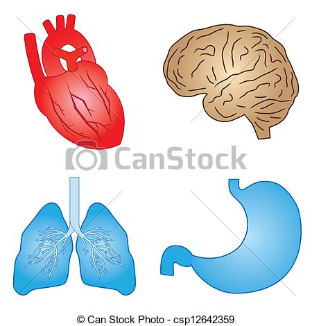 Organs clipart intestine Of human Clipart Free Set