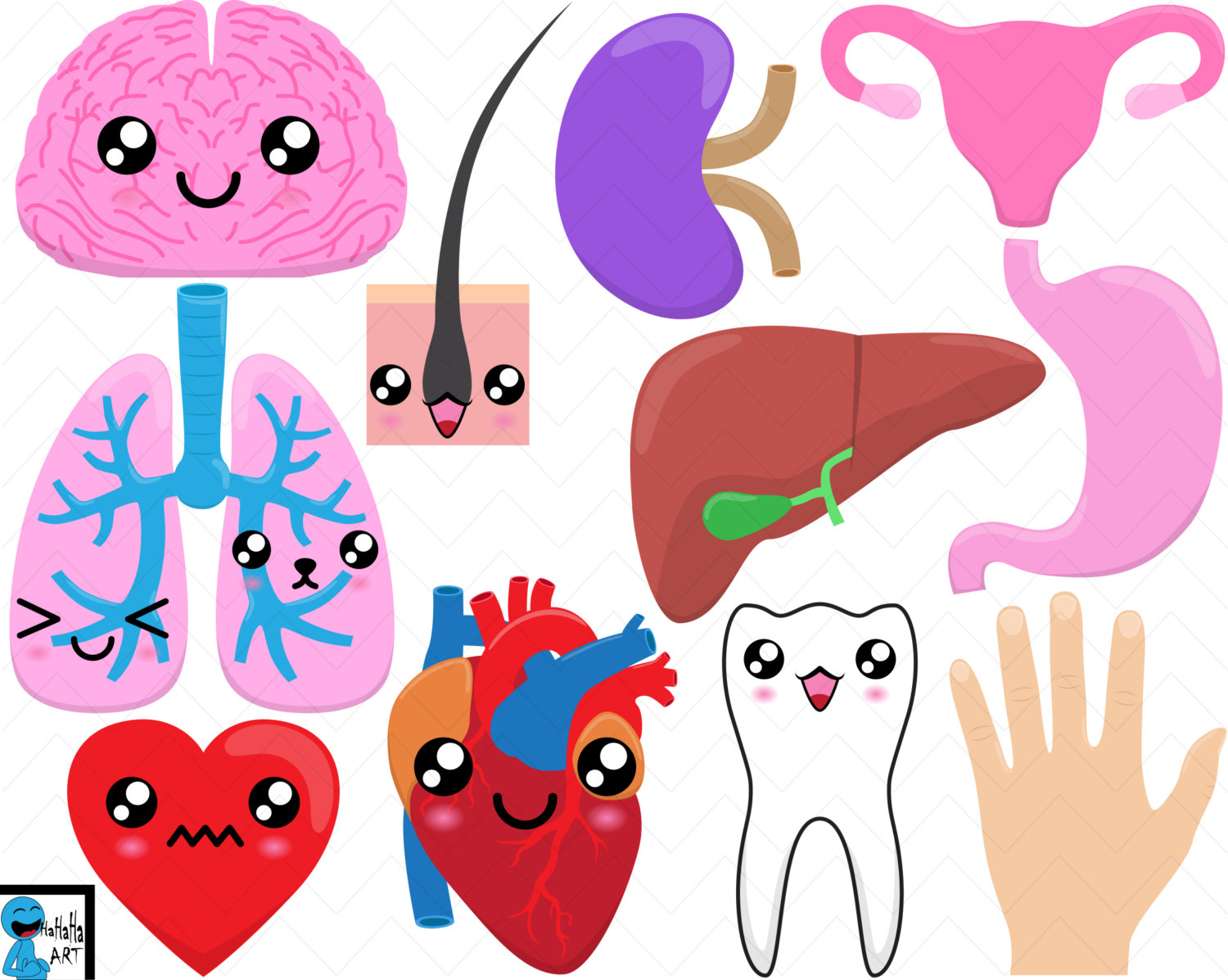 Organs clipart human kidney Digital Graphics Kawaii Clipart This