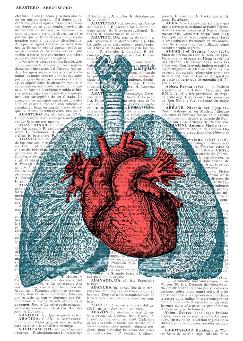 Organs clipart antique Of Vintage Images: Print Art: