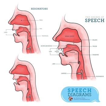 Organs clipart different  and Speech2 Set themed