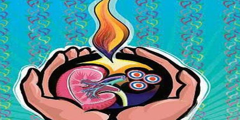 Organs clipart health science Organ Sciences(MUHS) Maharasthra University of