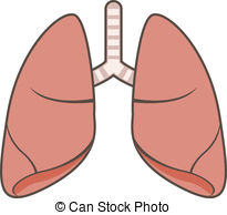 Organs clipart lung Lungs Lungs Clip breathing of
