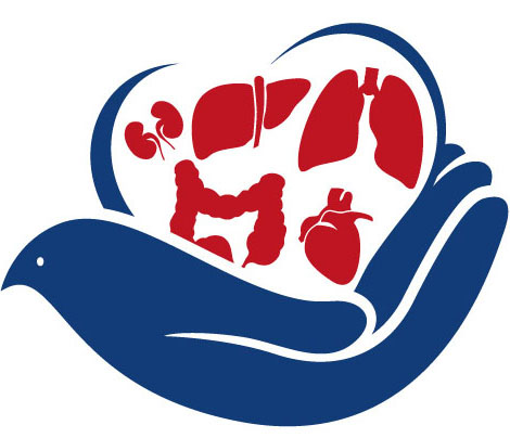 Organs clipart organ transplant It the there extremely growing
