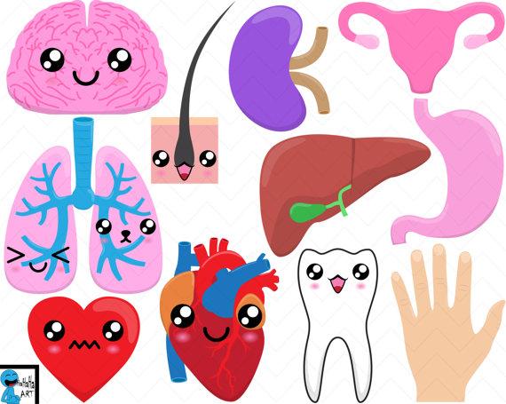 Organs clipart organism Clip Art Digital HaHaHaArt Instant