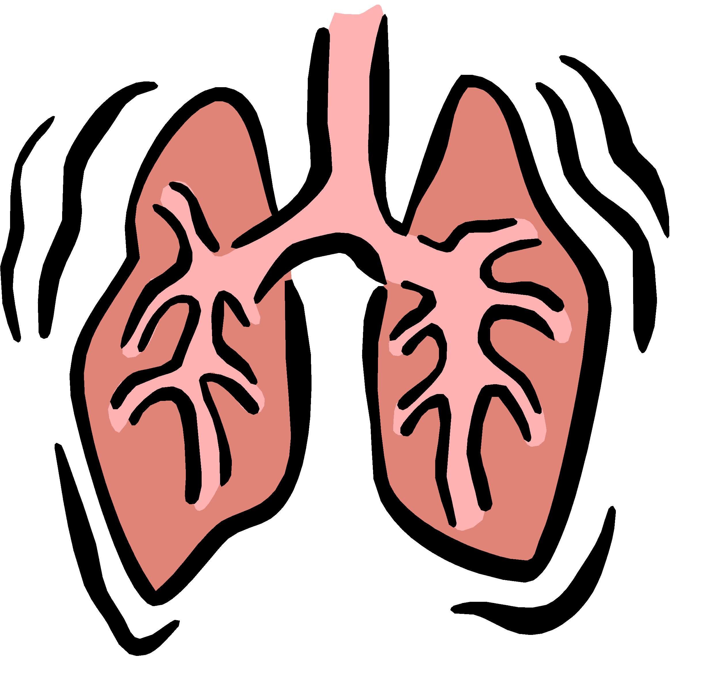 Science clipart respiratory system LUNGS ;Respiratory emaze on
