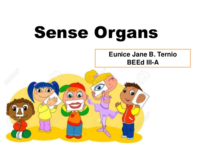 Organs clipart skeleton body The organs Eunice A Jane