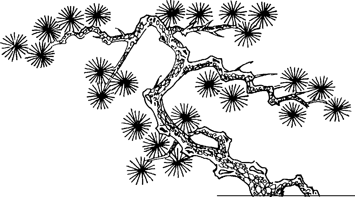 Oriental clipart « Technical clipart Practica Tree