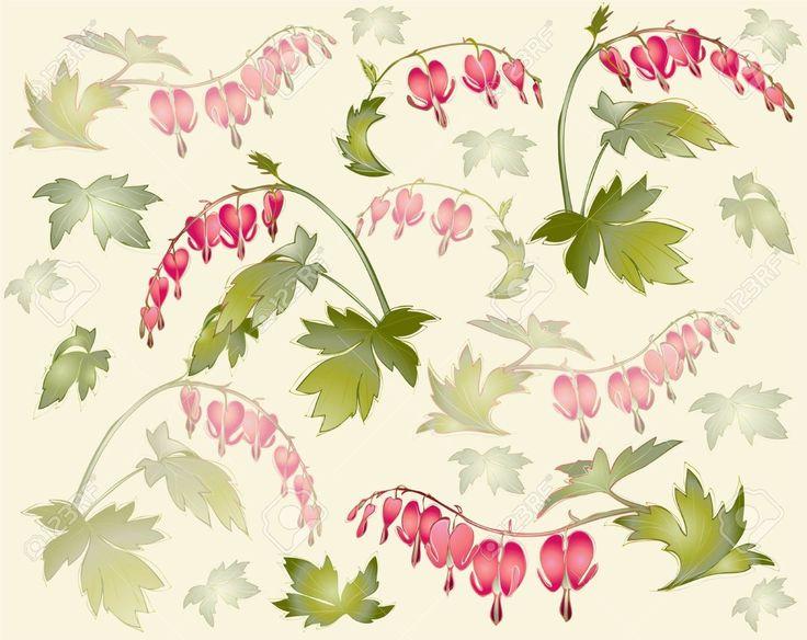 Ornamental clipart botanical #5