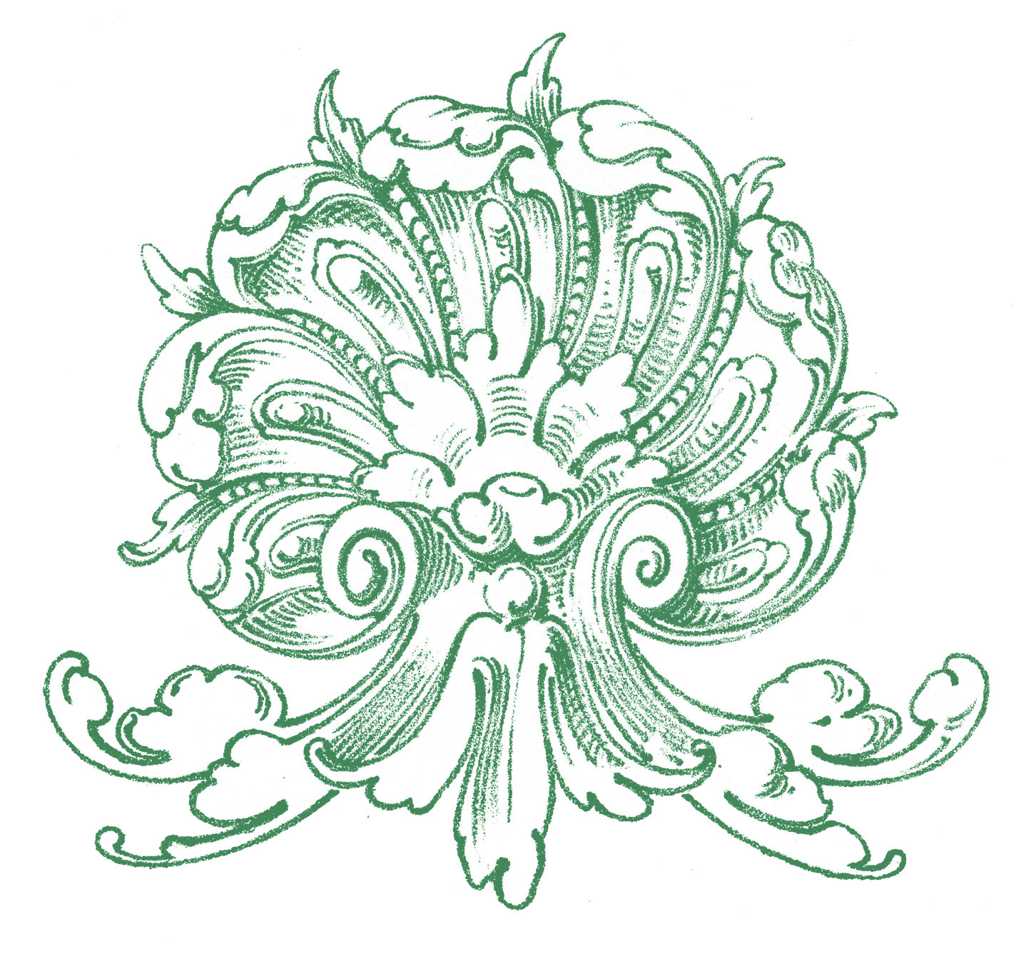 Ornamental clipart botanical #6