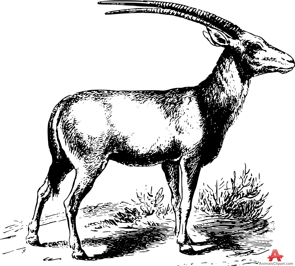 Oryx clipart Design Stencil Clipart Download Oryx