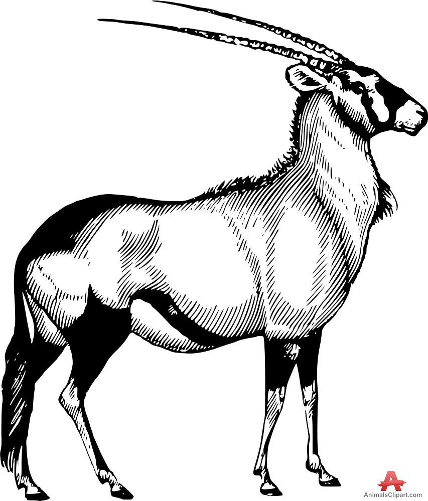 Oryx clipart Design Design Clipart Download Oryx