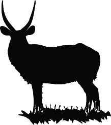 Oryx clipart cartoon Oryx Oryx Silhouette Silhouette of