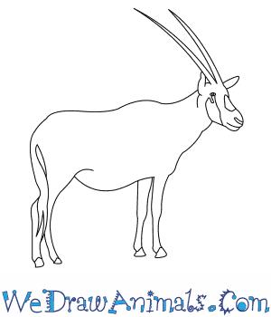 Oryx clipart arabian oryx  Draw How Arabian to