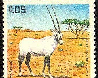 Oryx clipart arabian oryx Art Arabian leucoryx oryx Etsy