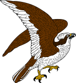 Osprey clipart Family Arms your Crest Browse