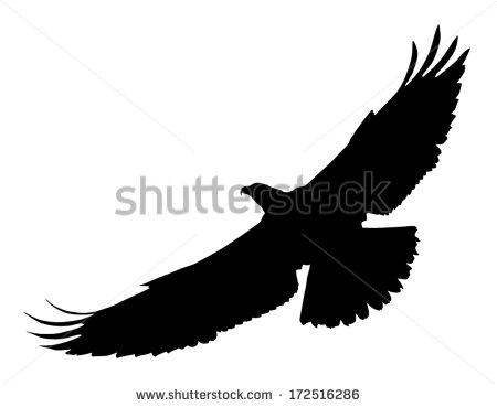 Bird Of Prey clipart silhouette Bird (Osprey) of  in