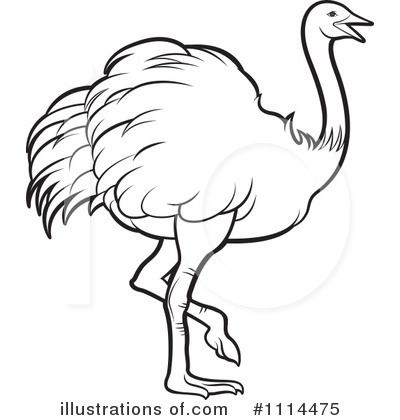 Ostrich clipart Lal by #1114475 Illustration Illustration