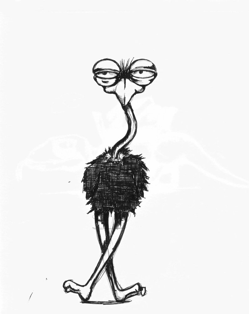 Ostrich clipart angry Squro by Ostrich by on