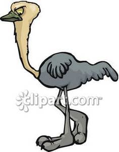 Ostrich clipart angry Picture Cartoon Free Royalty Cartoon