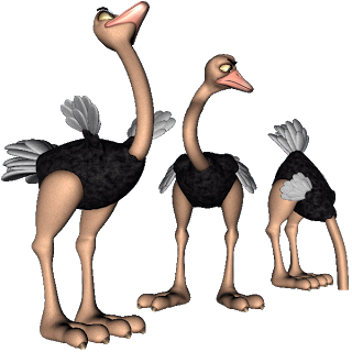 Ostrich clipart sketch Ostrich Bird Images Ostrich Cartoon
