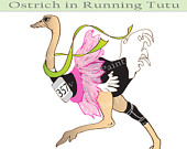 Ostrich clipart sketch Funny Running Animal Cute Running