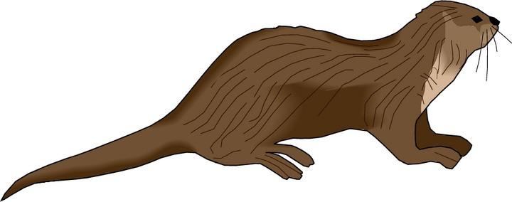 Sea Otter clipart Otter Clipart otter%20clipart%20 Images Panda